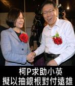 柯P求助小英 擬以抽銀根對付遠雄-台灣e新聞
