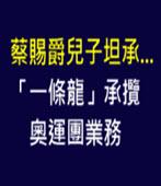 蔡賜爵兒子坦承...「一條龍」承攬奧運團業務 -台灣e新聞