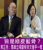 皆是綠皮藍骨? 郭正亮:兩岸立場跟蔡英文幾乎一樣-台灣e新聞