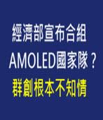 宣布合組AMOLED國家隊? 群創根本不知情 -台灣e新聞
