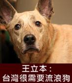 王立本 : 台灣很需要流浪狗 -台灣e新聞
