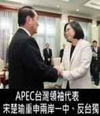 APEC台灣領袖代表 宋楚瑜重申兩岸一中、反台獨 - 台灣e新聞