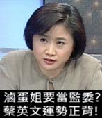 滷蛋姐要當監委? 蔡英文運勢正背!- 台灣e新聞