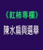 陳水扁與選舉 - 〔紅柿專欄:No. 15〕Andy Chang - 台灣e新聞