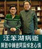 汪笨湖病逝 陳致中轉達阿扁悼念心情-台灣e新聞