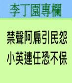 禁聲阿扁引民怨 小英連任恐不保 -◎李丁園- 台灣e新聞