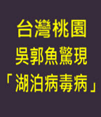台灣桃園吳郭魚驚現「湖泊病毒病」- 台灣e新聞