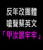 反年改團體嗆聲蔡英文「甲汝跟牢牢」-台灣e新聞