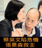 蔡英文陷危機 張景森救主 - 台灣e新聞