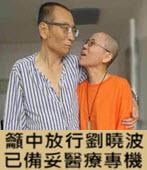 籲中放行劉曉波 國際律師:已備妥醫療專機-台灣e新聞