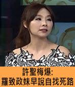 許聖梅爆 : 羅致政妹半年前早說自找死路- 台灣e新聞