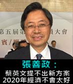 張善政:蔡英文提不出新方案 2020年經濟不會太好-台灣e新聞