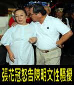 「叫他不要這樣還不停」 張花冠怒告陳明文性騷擾 -台灣e新聞