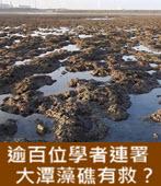 逾百位學者連署 大潭藻礁有救?- 台灣e新聞