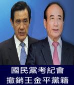 頭條:頭條:國民黨考紀會撤銷王金平黨籍-台灣e新聞