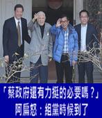 「蔡政府還有力挺的必要嗎?」 阿扁怒:組黨時候到了 -台灣e新聞