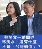 蔡英文一番闡述 林濁水:還有什麼不是「台灣價值」?-台灣e新聞