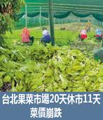 台北果菜市場20天休市11天 菜價崩跌  - 台灣e新聞