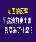 前妻的反擊 平鑫濤前妻出書到底為了什麼?-台灣e新聞