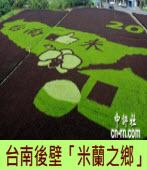 台南後壁稻田彩繪「米蘭之鄉」 - 台灣e新聞
