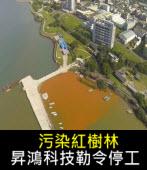 污染紅樹林 昇鴻科技勒令停工 - 台灣e新聞