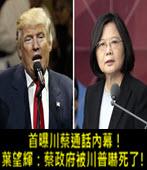 首曝川蔡通話內幕!葉望輝:蔡政府被川普嚇死了!  -台灣e新聞