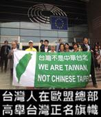 台灣人在歐盟總部高舉台灣正名旗幟 -◎李丁園- 台灣e新聞