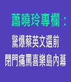 蕭曉玲專欄:驚爆蔡英文選前閉門痛罵喜樂島內幕-台灣e新聞