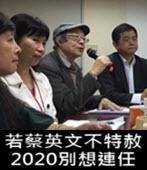挺陳水扁!獨派:若蔡英文不特赦 2020別想連任 - 台灣e新聞