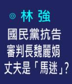 國民黨抗告審判長魏麗娟 丈夫是「馬迷」?-◎ 林強- 台灣e新聞