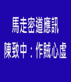 馬走密道應訊, 陳致中:作賊心虛 -台灣e新聞