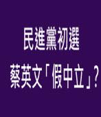 民進黨初選  蔡英文「假中立」?-台灣e新聞
