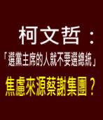 柯文哲:「選黨主席的人就不要選總統」焦慮來源蔡謝集團?-台灣e新聞