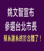 姚文智宣布參選台北市長,蔡系謝系終於合體了! - 台灣e新聞