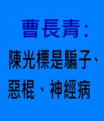曹長青:陳光標是騙子、惡棍、神經病 - 台灣e新聞
