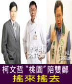 鄭寶清選桃園市長 柯文哲力挺 -台灣e新聞